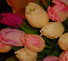 Delicate Beauties by Fara