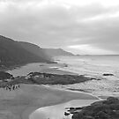 Lights Beach - Black and White by pennyswork