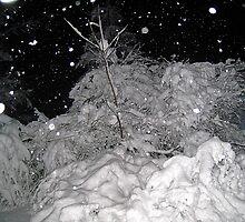 a dark and snowy night by LoreLeft27