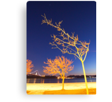 the tree and the star. Canvas Print