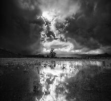 Light Storm by Bob Larson