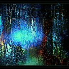 The Light In The Woods by Danpatrick