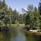 Yosemite National Park by paulgranahan