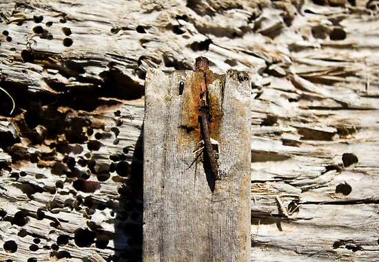 rusty nail. by HanselASolera