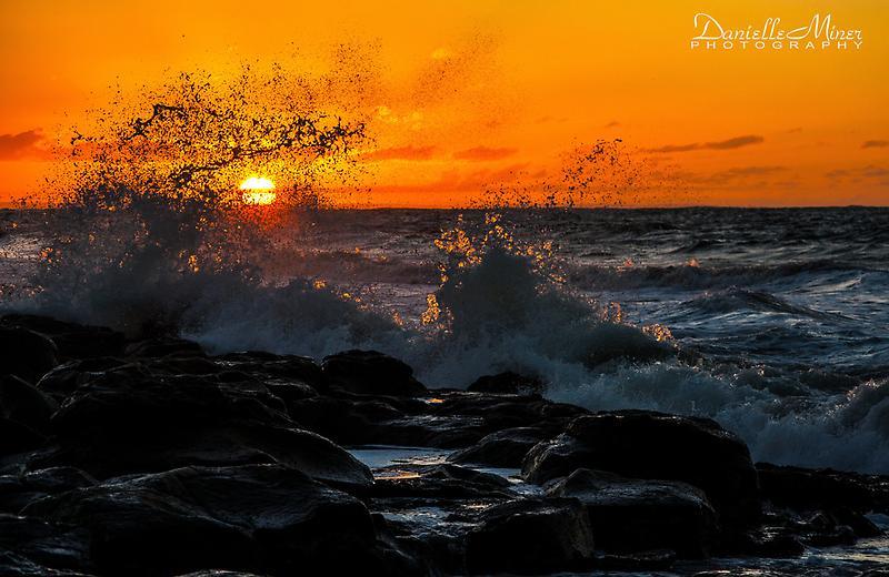 Breamlea Sunrise Splash by Danielle  Miner