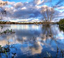 Clouds on the Water by Sue  Cullumber