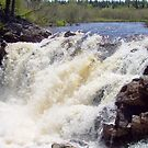 Rushing Waters - Lepreau Falls by Martha Medford
