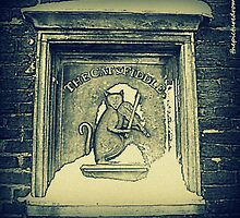 The Cat & Fiddle by thepicturedrome