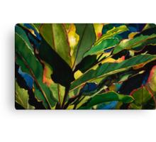 Ginger Leaves Canvas Print