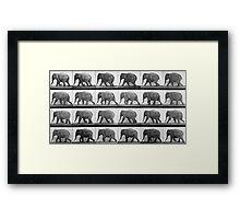 Elephant walking, plate 733 from 'Animal Locomotion', 1887  Framed Print