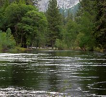 Yosemite Merced River by Henrik Lehnerer