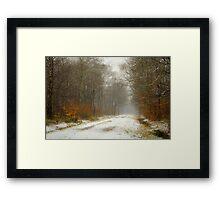 Mist and snow Framed Print