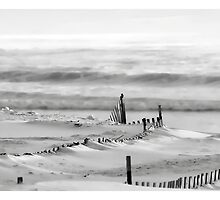 Winter Dunes by Richard Bean
