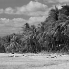 la playa by HanselASolera