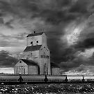 Saskatchewan Grain Elevator by Mindy McGregor