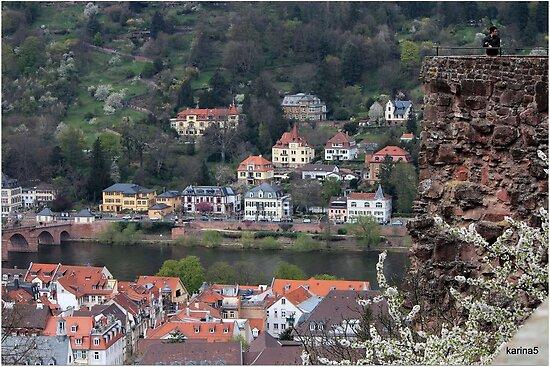 Ancient Heidelberg by karina5