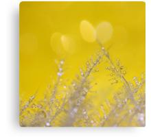 Yellow Sparkles Canvas Print