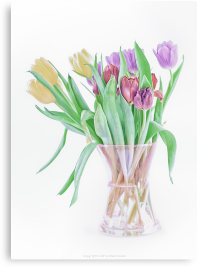 Tulips from ASDA by Brian Dukes
