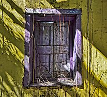 Purple Shutters... by 242Digital