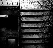 down the slippery stairs by Nicole W.