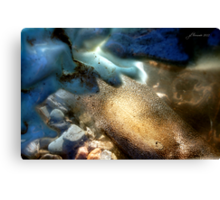 Sea-Through Canvas Print