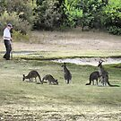 Golfing amongst the Roo's (1) by Larry Lingard-Davis