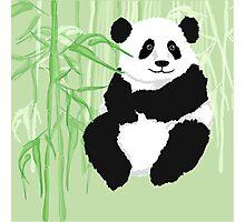 Green panda Photographic Print