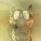 Schrödinger underestimates the cat by Carol and Mike Werner