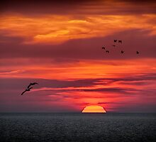 Sunset February 24, 2013 by rtouart
