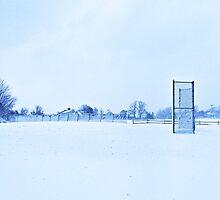 Baseball field by MKStudio