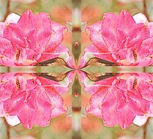 Rosy Reflection by aprilann
