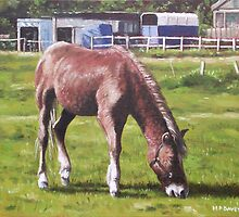 Brown Horse by Stables by martyee
