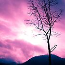 Into the Pink & Purple Sky ©  by JUSTART