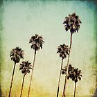 Palm Trees II by Mareike Bhmer