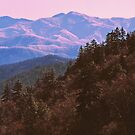 SMOKY MOUNTAIN WINTER by Chuck Wickham
