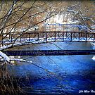 """The Rogue River in Winter"" by Deb  Badt-Covell"