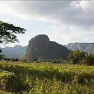 Mogote in Valle de Viñales, Cuba by ponycargirl