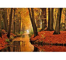 Remembering autumnal dreamland Photographic Print