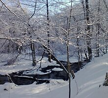 Winter Landscpape by chrstnes73