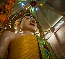 Budda by Trevor Middleton