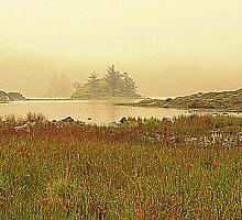 Irish Mist by Fara