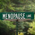 Menopause Lane by Sue Smith