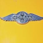 Morgan Emblem (on Yellow) by Stephen Mitchell