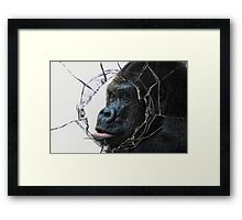 looking for freedom Framed Print