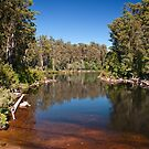 Huon River, Tahune Forest Airwalk, Tasmania by SusanAdey