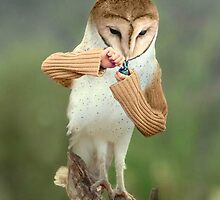 A Barn Owl smoking a Bowl by Felfriast