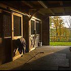 Horse Barn Sunset by Edward Fielding