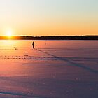On the Ice by dennisdasfoto