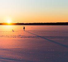 On the Ice by dennisdasfoto