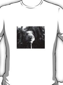 Pig Killer T-Shirt